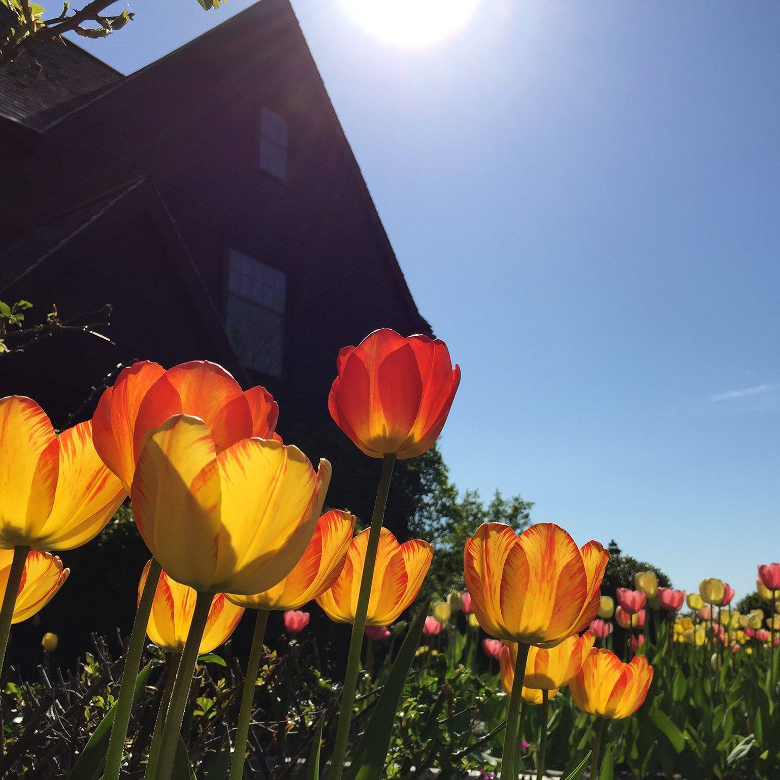 Visit the House of Seven Gables by renting a charter bus.