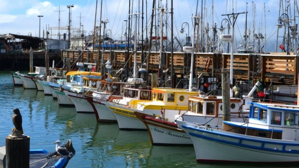 Fisherman's Wharf Charter Bus Rentals