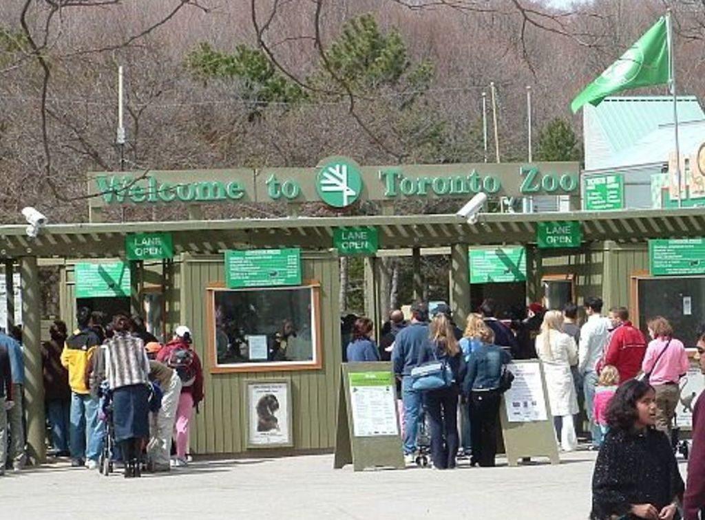 Toronto Zoo charter bus rentals