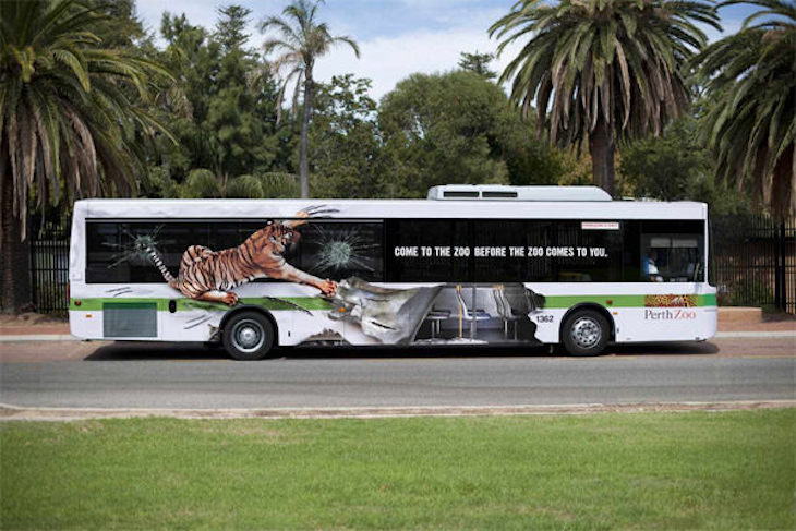 Perth Zoo's tiger bus can serve as inspiration for your own bus wrap design.