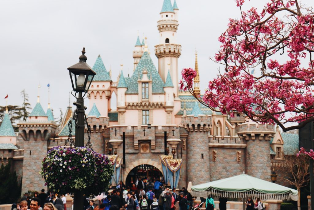 Rent a charter bus from LAX to Disneyland.