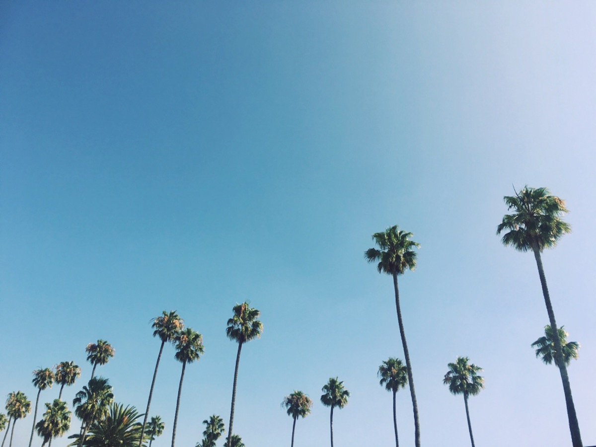 Guide to Los Angeles Corporate Bus Rentals