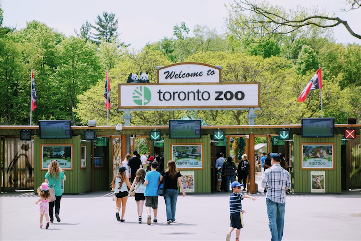 Charter bus rentals to the Toronto Zoo.