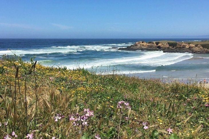 San Francisco charter bus rentals to Mendocino County.
