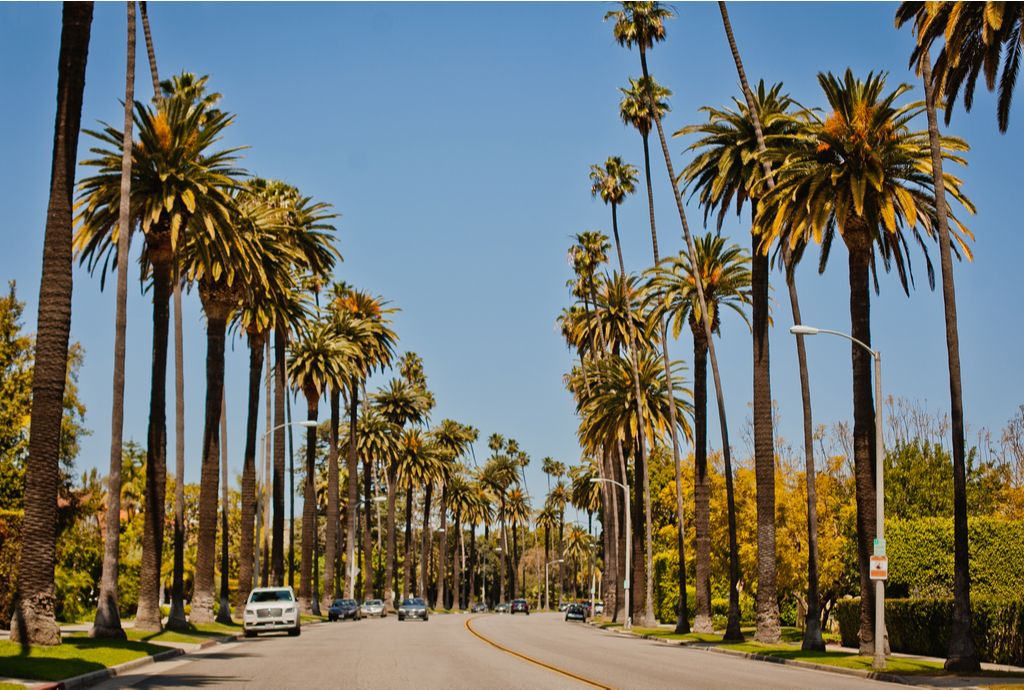 Charter a bus to Beverly Hills