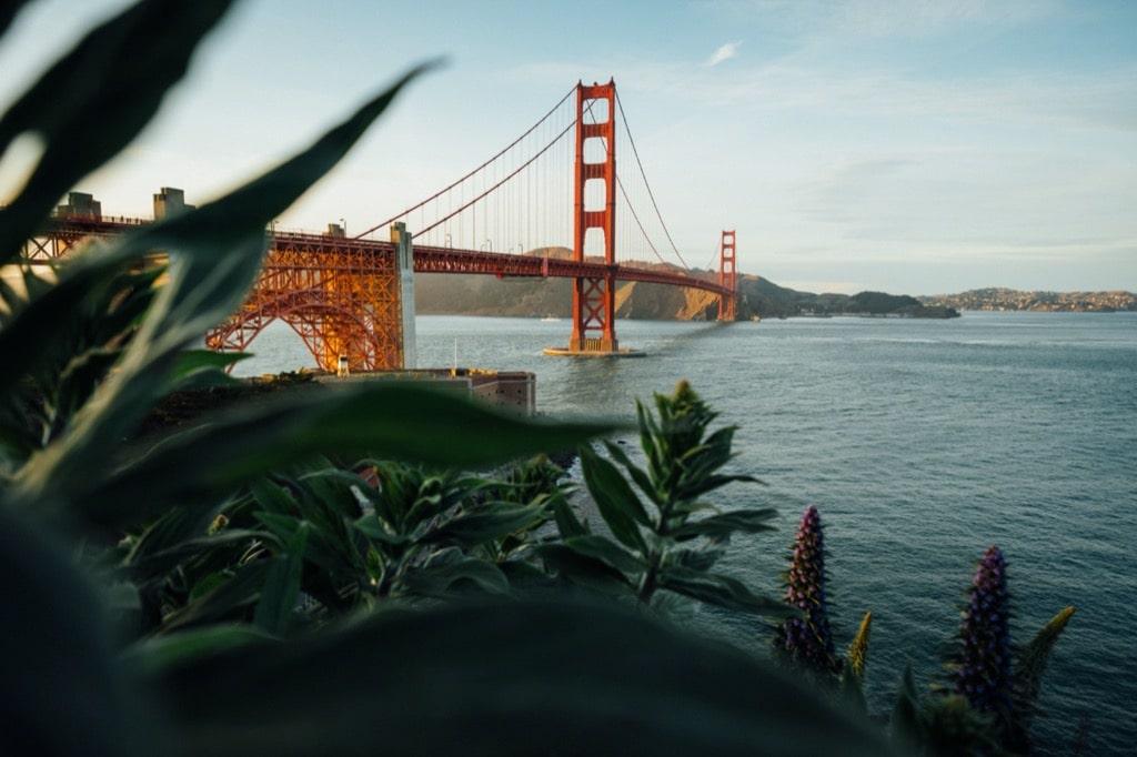 San Francisco charter bus rentals