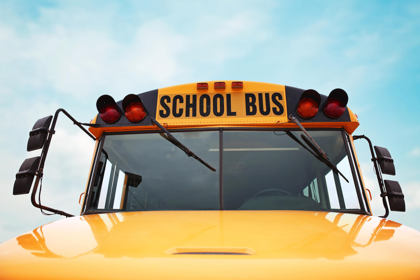 Why are School Buses Yellow? And Other Fun Facts About Buses